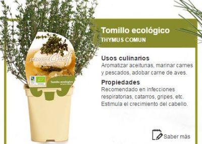 Tomillo ecológico