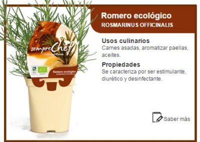 Romero ecológico