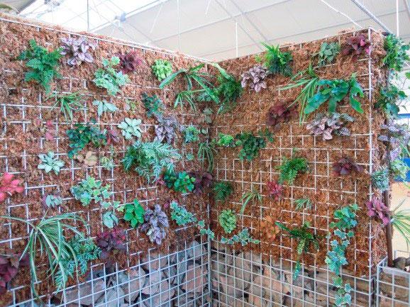 construir jardín vertical plantas de interior 1