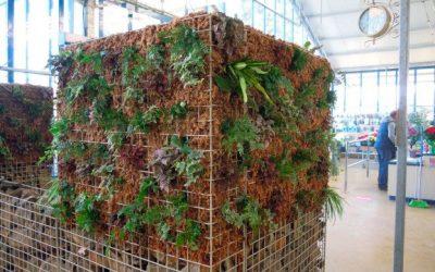 ¿Cómo construir un jardín vertical en pocos pasos?