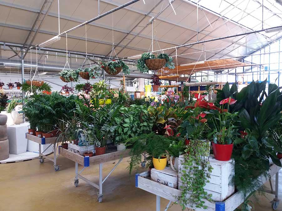 centro de jardinería ebro jardín