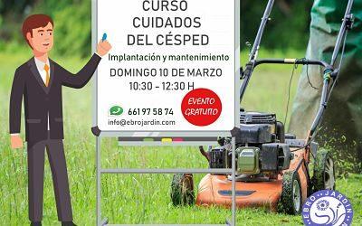 Curso de cuidados del césped en Zaragoza