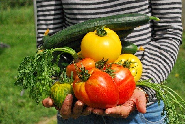 Beneficios de los alimentos de la tierra
