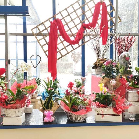 flores y centros san valentin